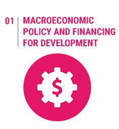 Macroeconomic Policy and Financing for development