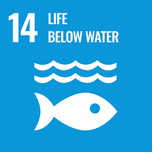 SDG 14. Life Below Water