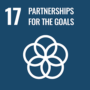 SDG 17. Partnerships for the Goals