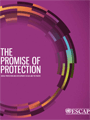 Theme Study on Social Protection cover